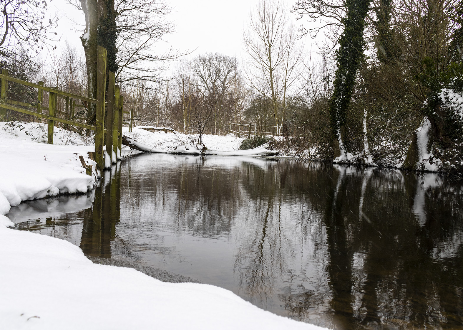 The pond at Quaker Wood, surrounded by snow